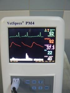 vétérinaire cagnes cardio-vasculaire